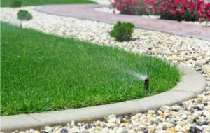 sprinkler on lawn | DIY sprinkler installation | Designer Watering Systems